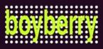 Boyberry<br>Barcelona, Spanien