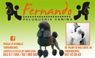 Fernando Peluqueria Canina<br>Torremolinos, Spain